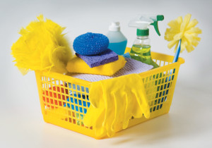 Cleaning on a Budget